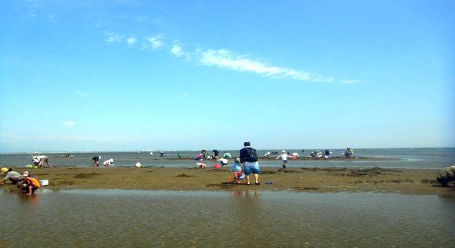 千葉県の潮干狩りスポット