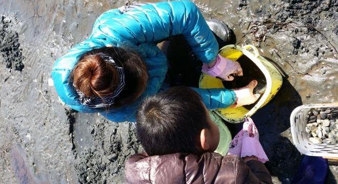 茨城の潮干狩りスポット