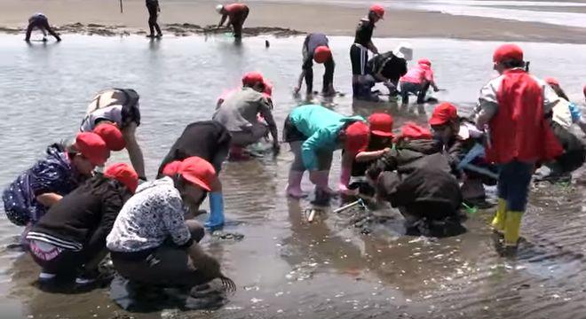 九州の潮干狩りスポット
