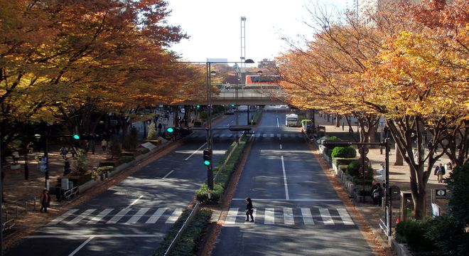 東京都の紅葉スポット