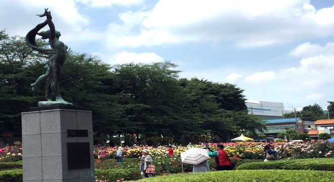 与野公園のバラ園